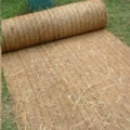 Where to rent STRAW EROSION BLANKET DOUBLE in Lebanon TN
